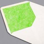 6493_Green-Dinosaur-Envelope